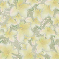 A03 Yellow Plumeria Scatter Large 8x8 Paper